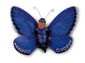 babybfly